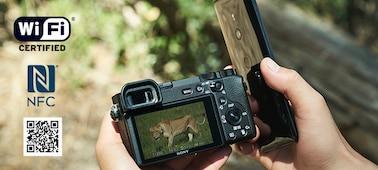 Picture of α6600 premium E-mount APS-C camera