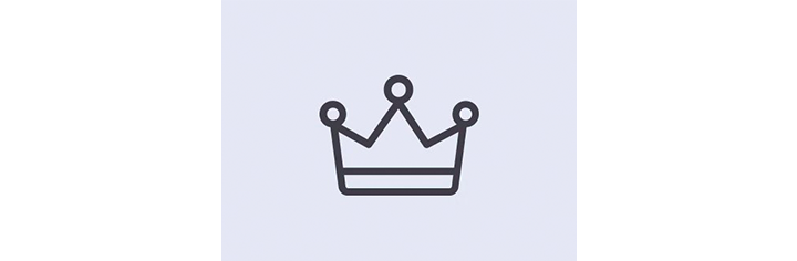 Party King icon