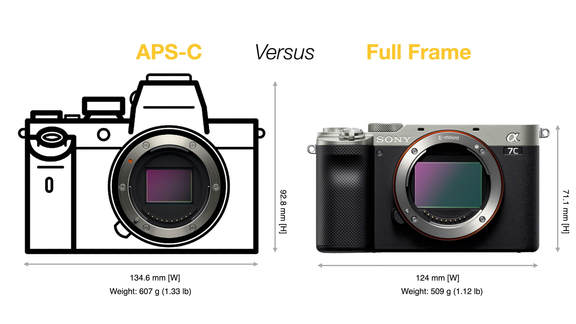 APS-C vs Full-frame camera