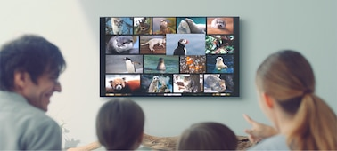 Picture of X80G   LED   4K Ultra HD   High Dynamic Range (HDR)   Smart TV (Android TV)