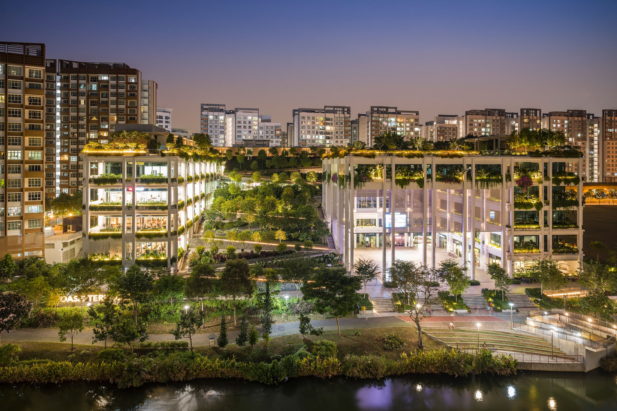 Sony Alpha 7R IV's advanced AF algorithms enables accurate precision in a night shot of Punggol's Oasis Terraces.
