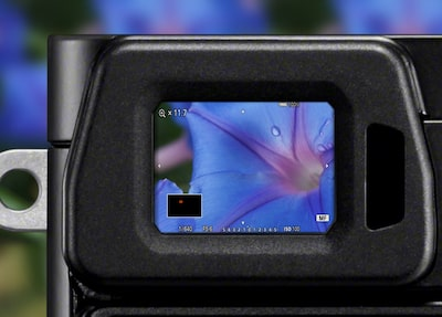 Image of zoom features